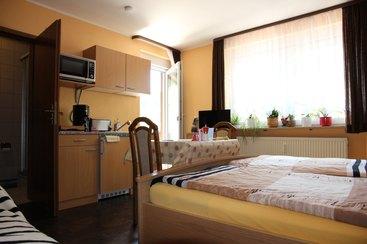 Appartement mit Schlafcouch, Singleküche mit Kühlschrank u. Gefrierfach, Heissluft-Mikrowelle, 2Platten-Herd, Flat-TV, Balkon, DU/WC