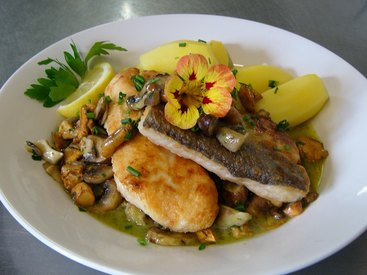 Filets von Seehecht und Rotbarsch gebraten auf frischen Mischpilzen in Bärlauchbutter, dazu Salzkartoffeln