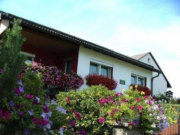 Frankenwald Ferienhaus Eisel