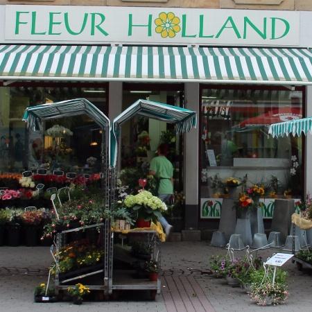 Blumen Fleur Holland