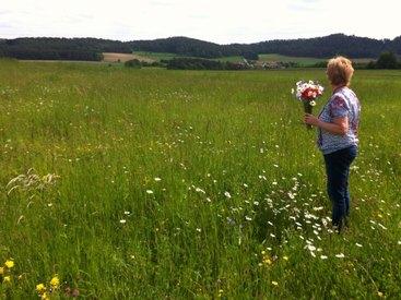 Im Klimaschutzprogramm | Unsere Blumenwiese am Adlitzer Berg