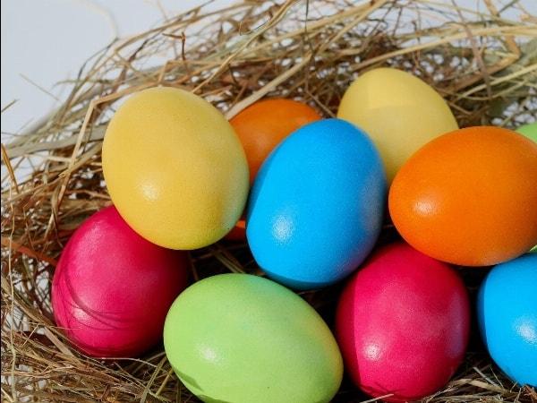 Unsere Osterkarte zum Abholen oder Liefern lassen ist online!