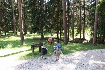 Sport-Freizeit-Wandern