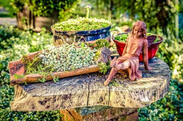 liebevoll gestalteter Garten