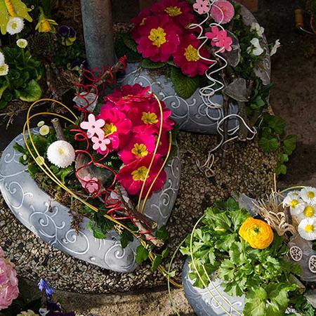 Tanja's Blumenparadies