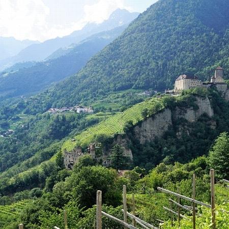 06. Juni 2020   Sonderveranstaltung: Unsere beliebte Winzer-Weinverkostung