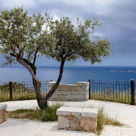 14. März 2020 Unser Weinabend rund um's Mittelmeer!