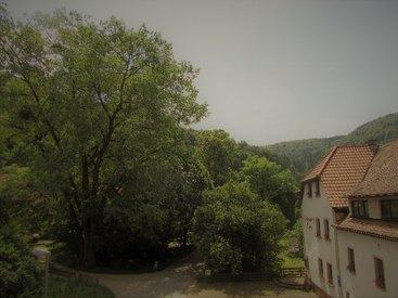 Ausblick vom Zweibettzimmer in das Ramstertal
