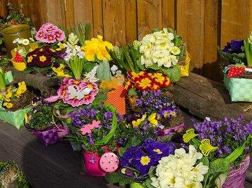 Blumen in großer Auswahl