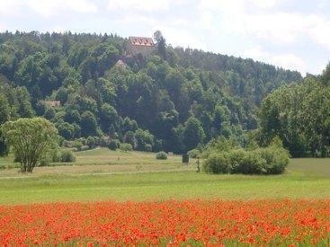 Blick zur Burg Rabeneck