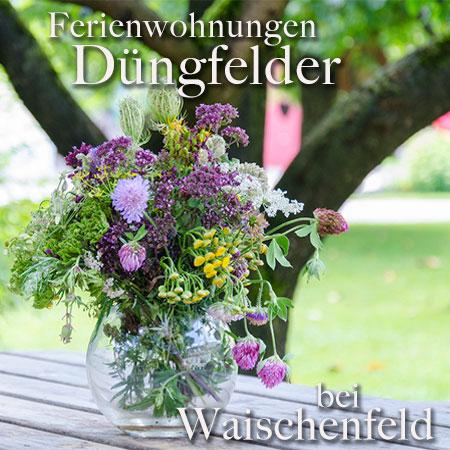 Ferienwohnung Düngfelder - Urlaub auf dem Grünerschhof