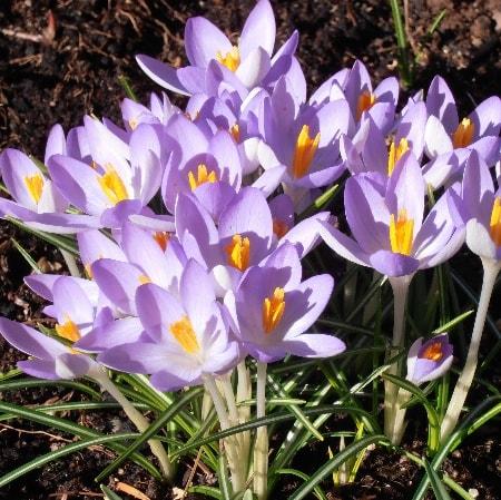 Frühlingserwachen - Ostern im Frankenwald 5 Übernachtungen für 2 Personen 175,00 €