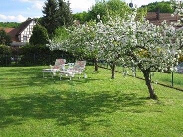 Großzügiger Garten mit Liegewiese