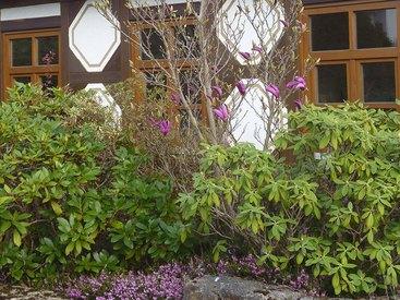 Idyllischer Garten