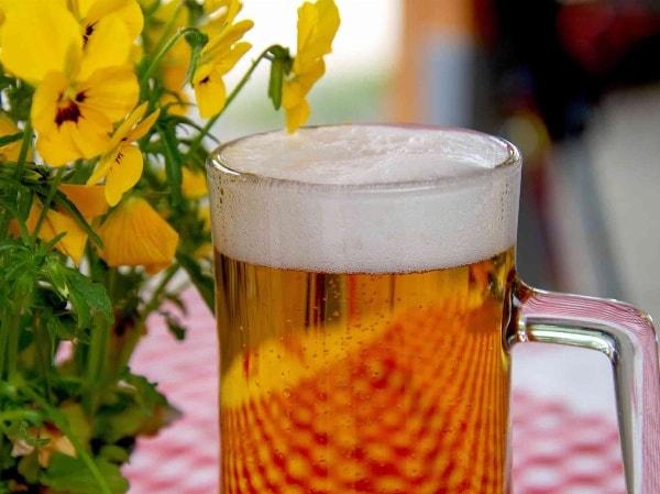 Unser Wirtshaus mit gemütlichem Biergarten inmitten der Natur ist wieder geöffnet!