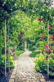 Blick in den idyllischen Garten