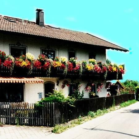 Chiemsee-Fischerei Steinbeißer-Reiter
