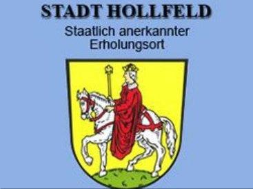 Wappen von Hollfeld