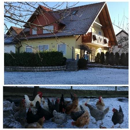 Zusammen mit unseren Tieren den Winter in unserer traumhaften Ferienwohnung verbringen.