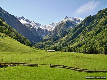 Blick zur Alpe Oberau und zur Trettachspitze im Sommer von der Terrasse der Murmeleshütte bei Oberstdorf im Allgäu