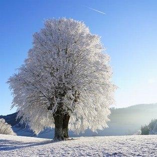 Winter in der Fränkischen Schweiz inkl. Thermeneintritt und Glühwein