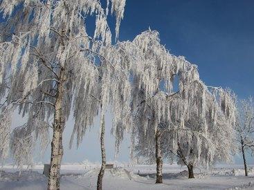 Bad Steben Ferienwohnung Heger Winter